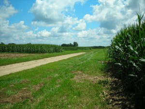 Wisconsin Integrated Cropping Systems Trial at the UW Arlington Research Station