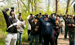 Searching for the Blue-gray Gnatcatcher!
