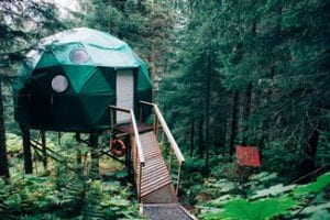 A geodesic retreat in the woods.