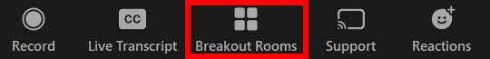 The Breakout Rooms button on the Zoom controls toolbar