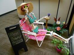 Nursing Summer Display