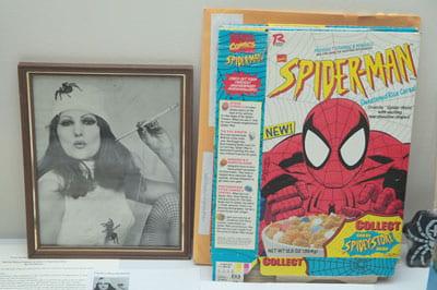 Webmasters! UW-Green Bay hosts spider specialists