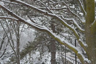 UWGB campus snow scenes