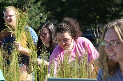 A rip rettin' good time: Student-faculty Flax Project kicks off another year