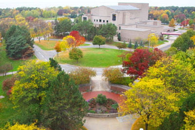 Go green: Fall brings a flurry of color