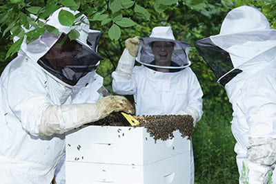 UW-Green Bay student beekeepers