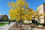 First colors: Slideshow captures fall's early splendor on campus