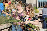 Flax now, goats later? Harvest provides history and fiber lesson for UWGB students