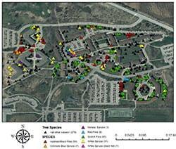 UWGB Housing Tree Map