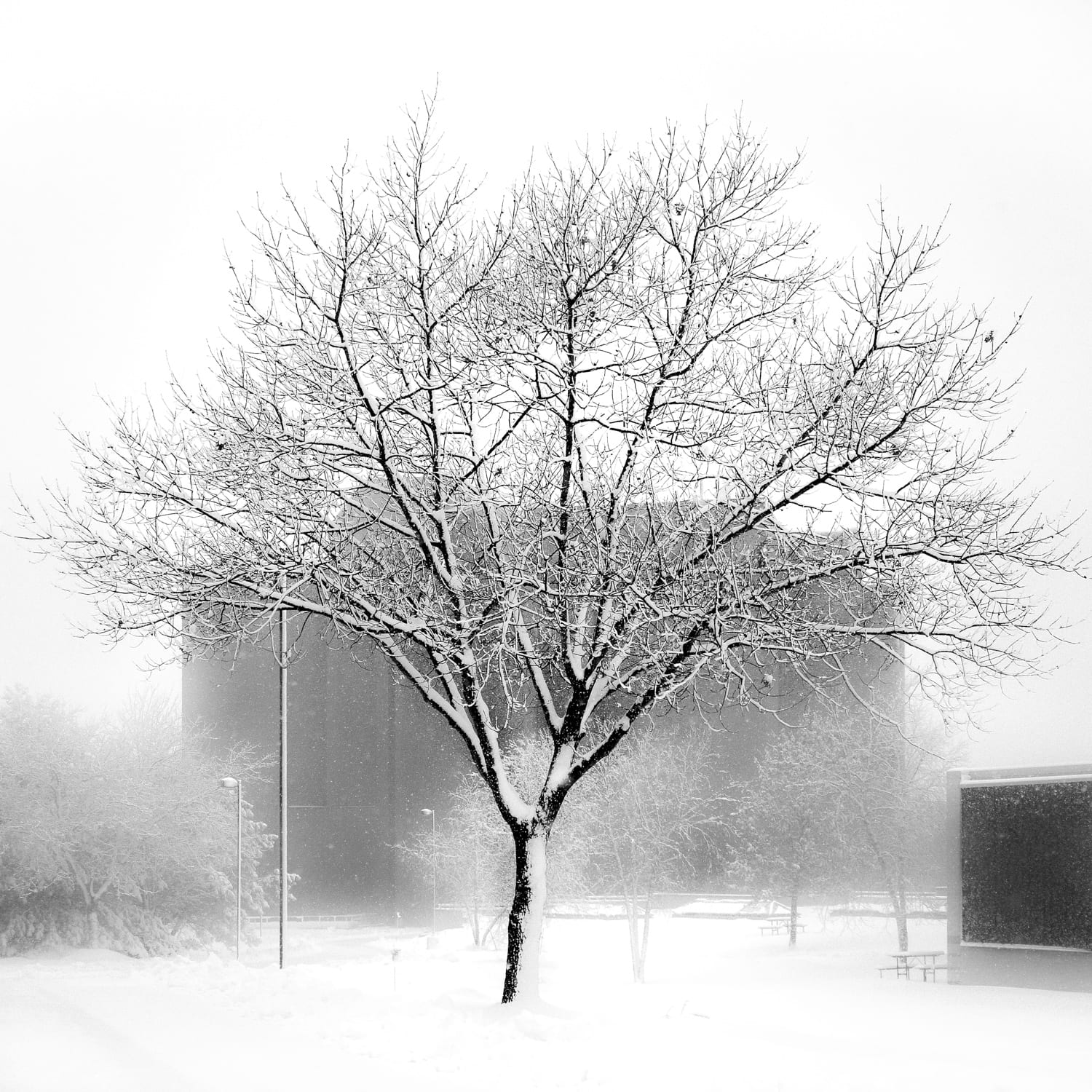 2 - Snowy Day on Campus