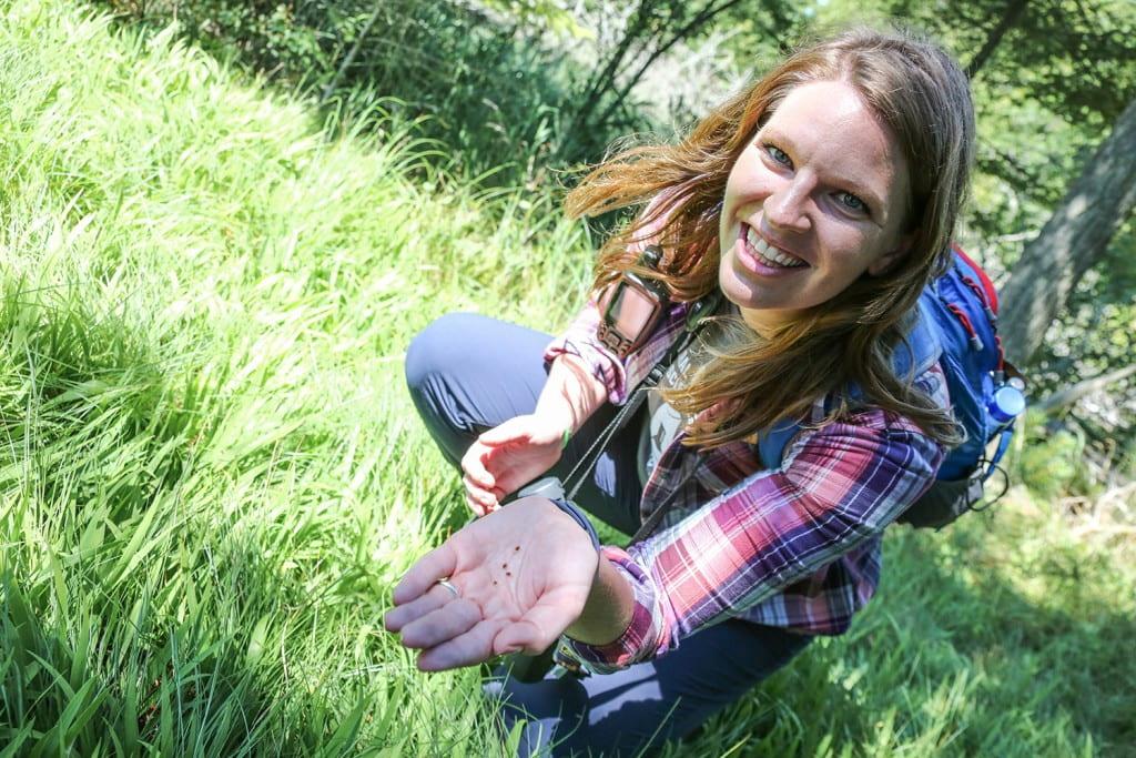 Vanessa Brotske holding endangered dwarf lake iris seeds at Toft Point