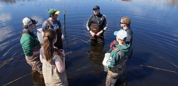 Environmental Science Students Monitoring Fish