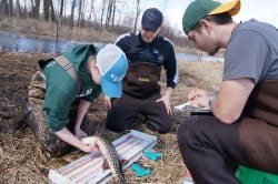 Patrick Forsythe and students tagging a northern pike.