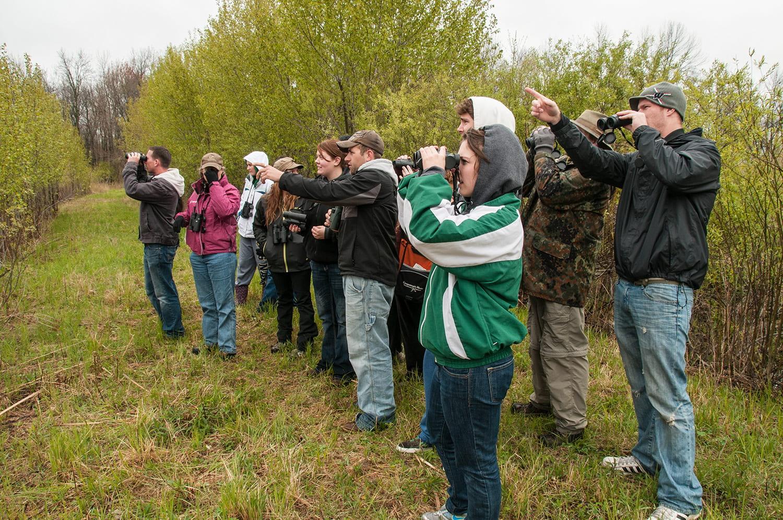 Cofrin Center for Biodiversity birdwatching