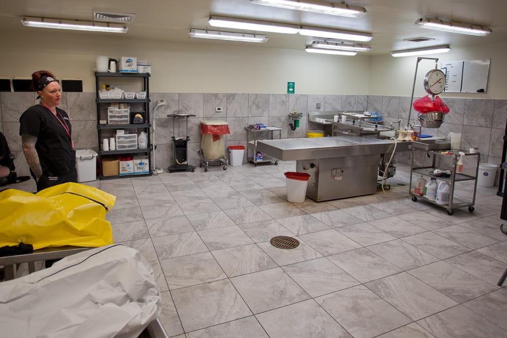 Samantha Kuba in the medical examiner's lab