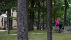 Marinette Campus zoom background