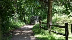 UW-Green Bay Arboretum Bridge Zoom Background