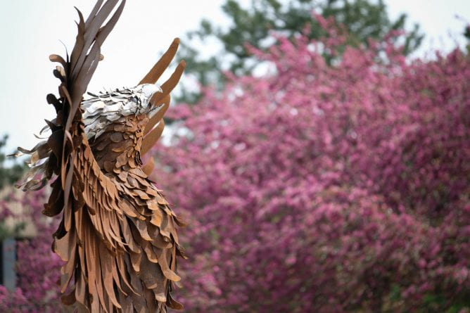 Phoenix Rising sculpture with trees in blossom in the background