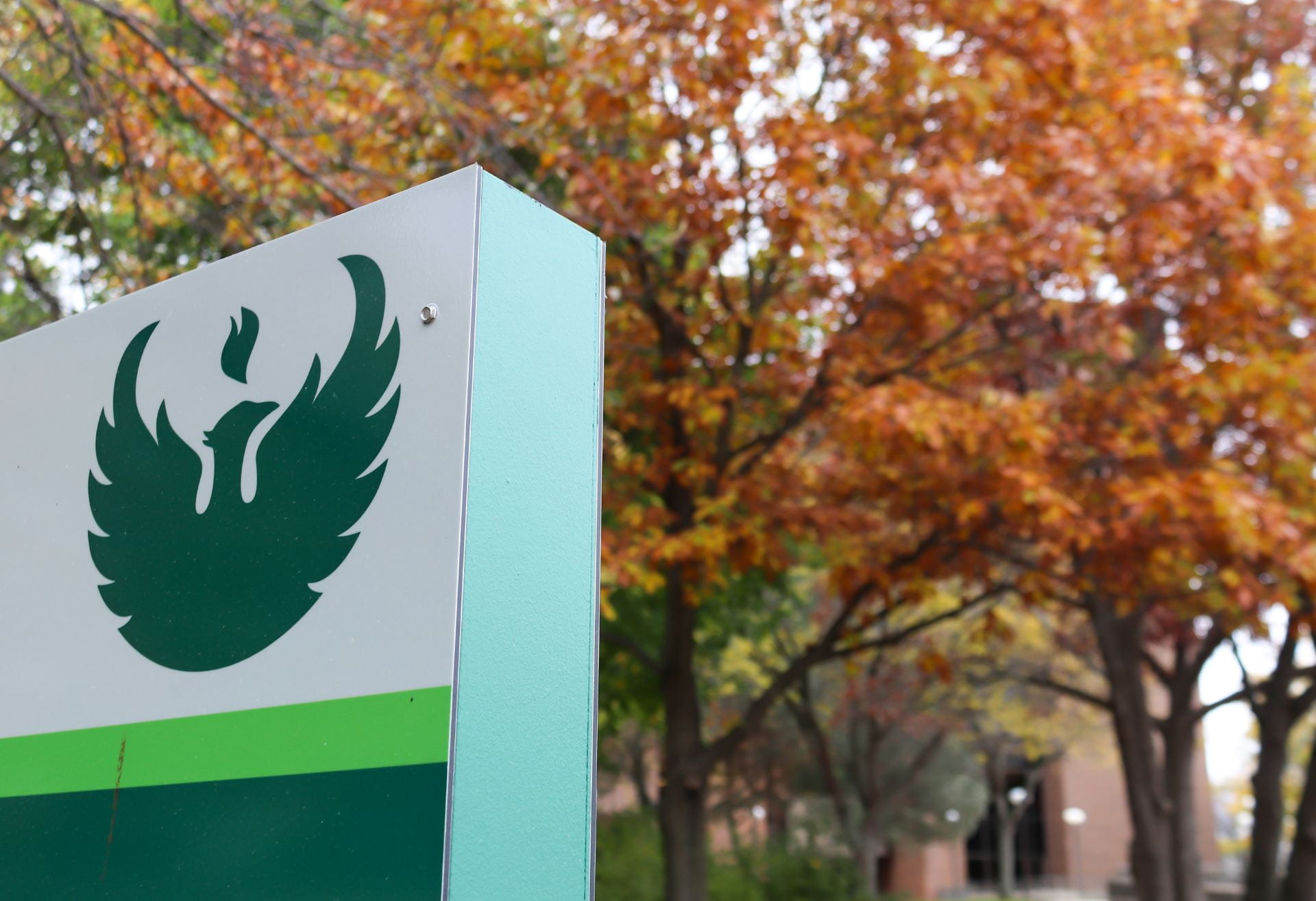 Photo of a Phoenix icon on an outdoor sign with fall color trees and the Cofrin Library in the background at the UW-Green Bay campus.