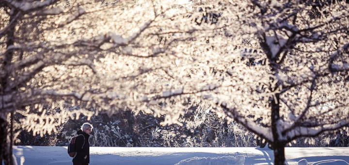 UW-Green Bay Winter Scene