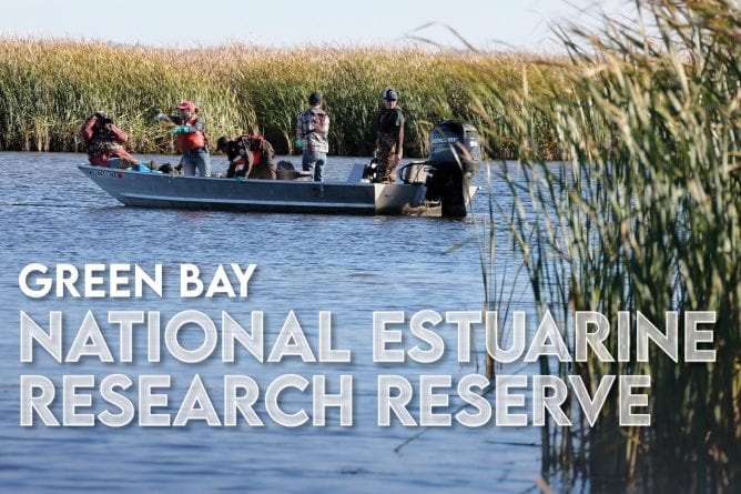 Photo of a group of people rice planting from a boat in the Bay of Green Bay with the text, Green Bay National Estuarine Research Reserve.