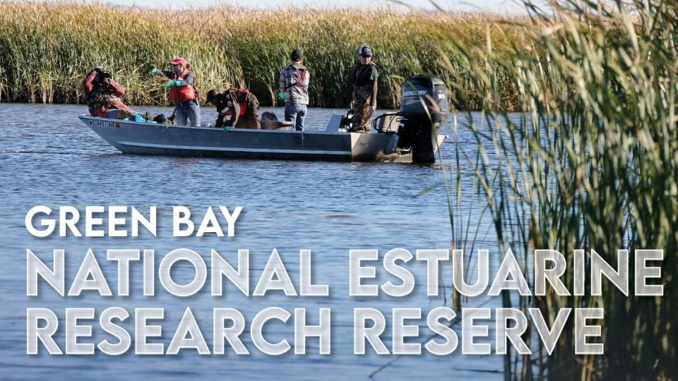 Green Bay National Estuarine Research Reserve
