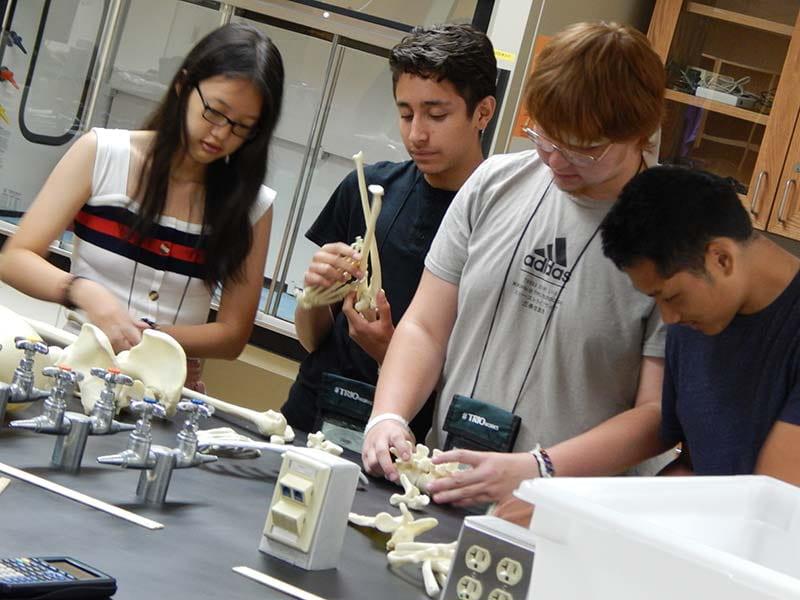 Upward Bound students in the UW-Green Bay Biology Lab