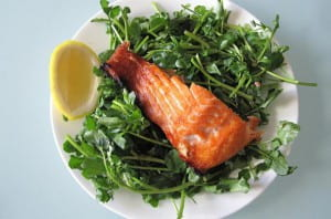 salmonseasoned