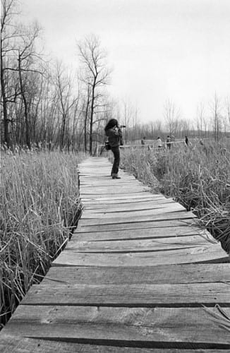 Photo memory 76 - Photographer on the Arboretum Boardwalk c.1980