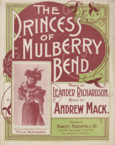 The Princess of Mulberry Bend, 1898