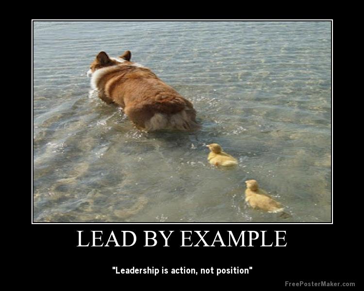 Leadership jokes: management humourous quotes, humorous advices.