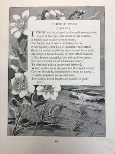"Emily Shaw Forman's ""Prickly Pear (Cactus),"" from Wild-Flower Sonnets (1895), Armstrong Browning Library"
