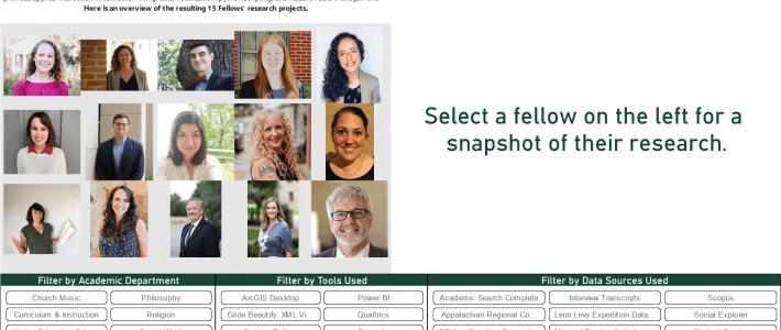 Data Research Fellows 2021