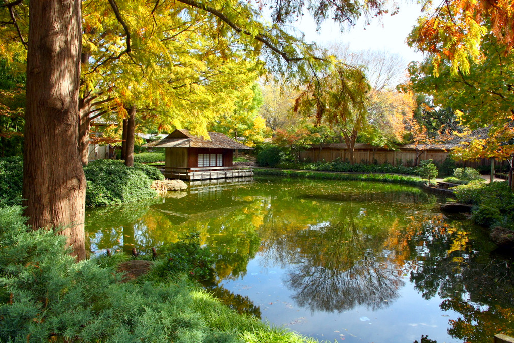 The Official Botanic Garden Of Rutgers: Baylor Admissions