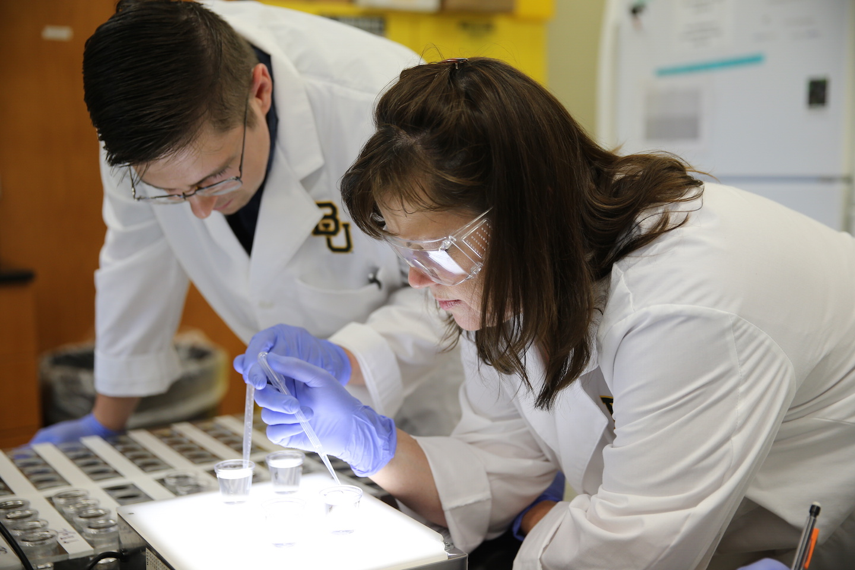 baylor major research university scientific offer science interdisciplinary emphasizing starter