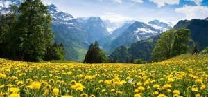 holiday-camp-switzerland-alpine-experience-1280x600