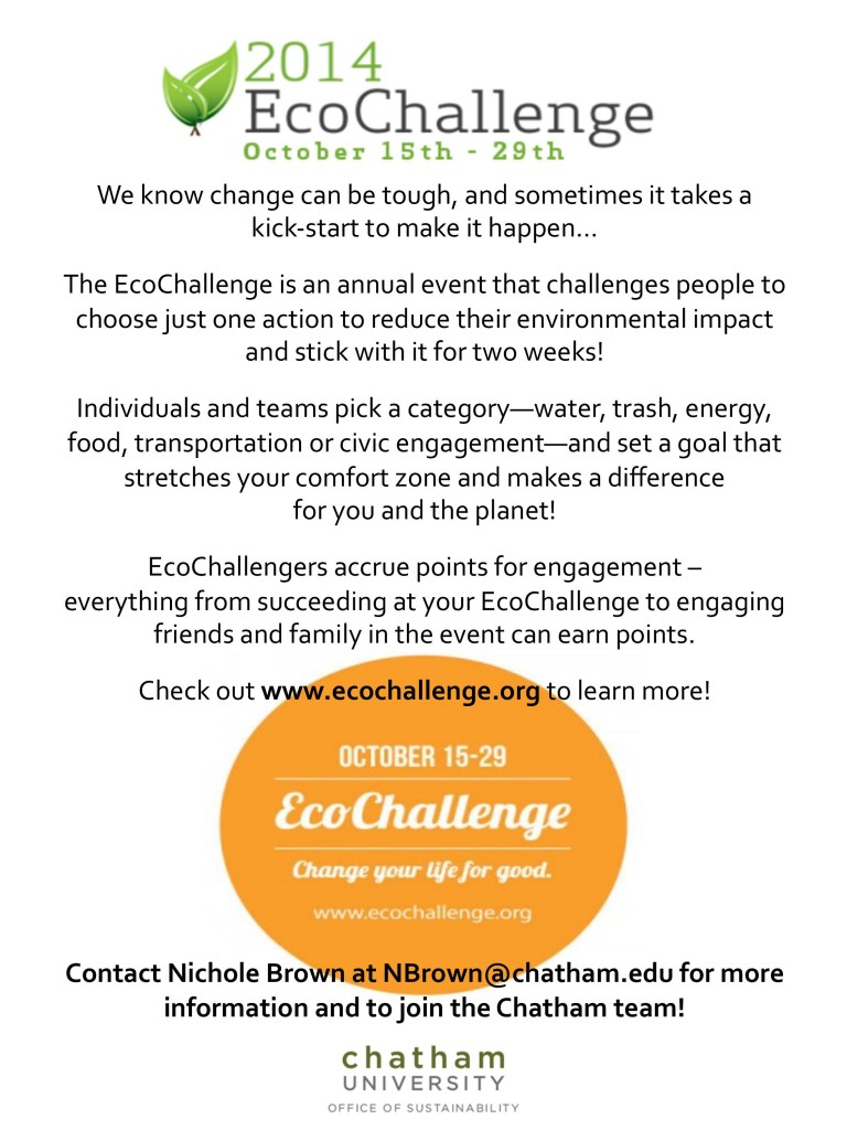 eco challenge flyer-page-001