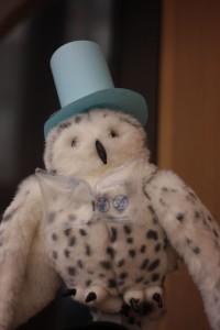 Circulation Owl