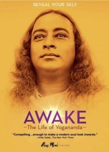 Film poster for Awake