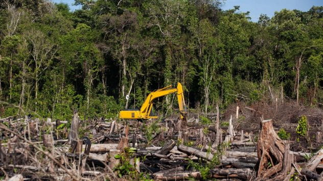 a bulldozer causing deforestation in a forest.