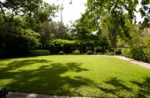 stern-center-garden