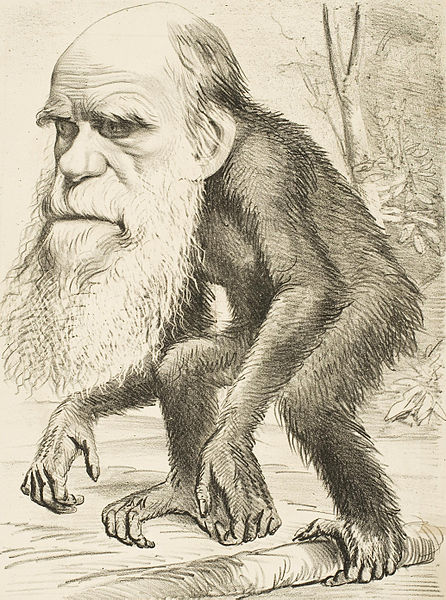 Darwin was the subject of satire often for his idea that humans evolved from apes. Image from WikimediaCommons.