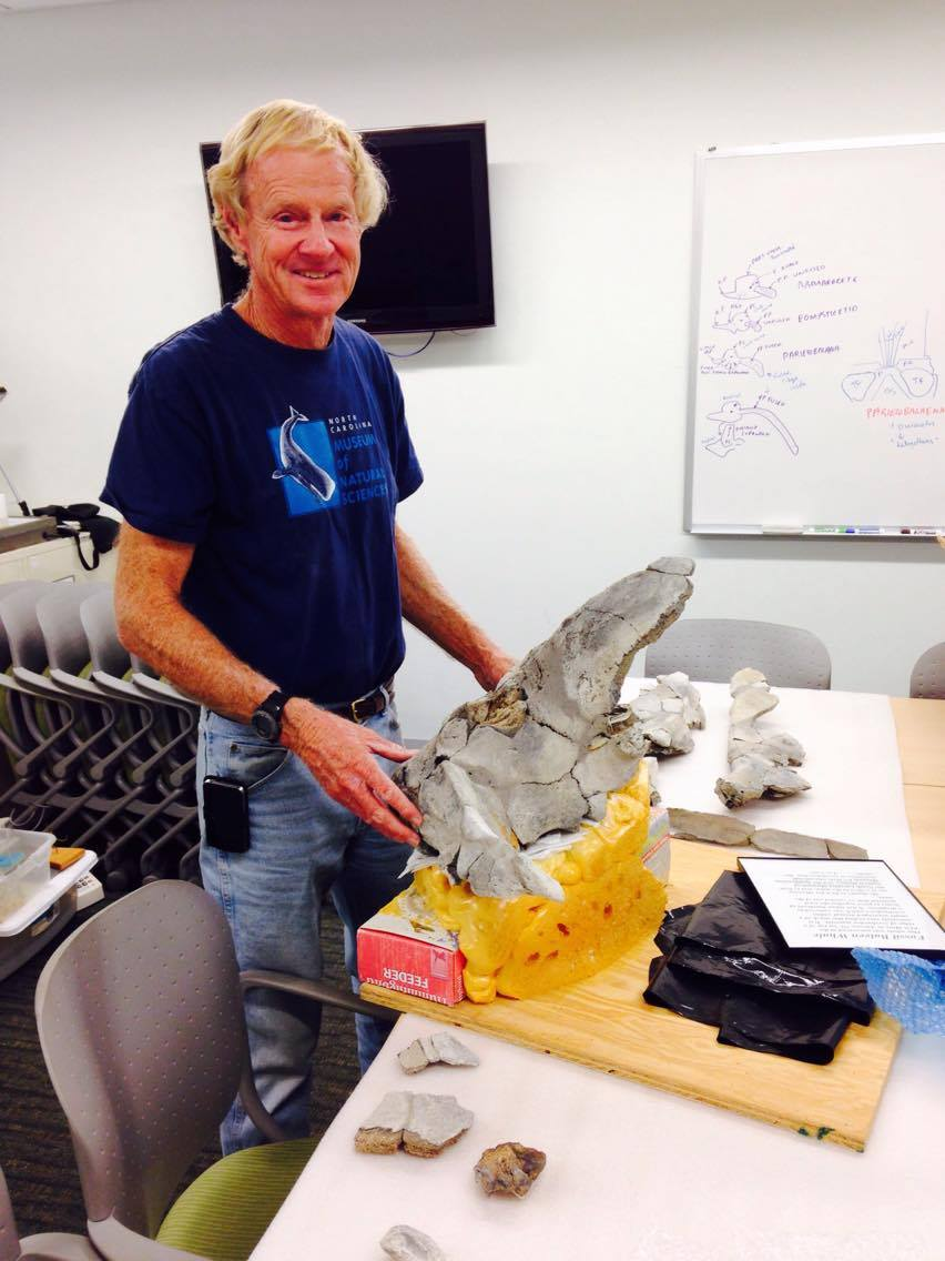 Lee Cone with the skull he excavated and donated to CCNHM. Photo by R. Boessenecker