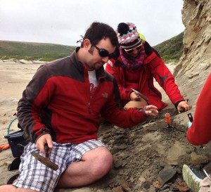 R.W. Boessenecker, S.J. Boessenecker, and L.K. Pearson excavating a phocoenid porpoise skeleton from the lower Pliocene Purisima Formation at Point Reyes, northern California. May 2015.
