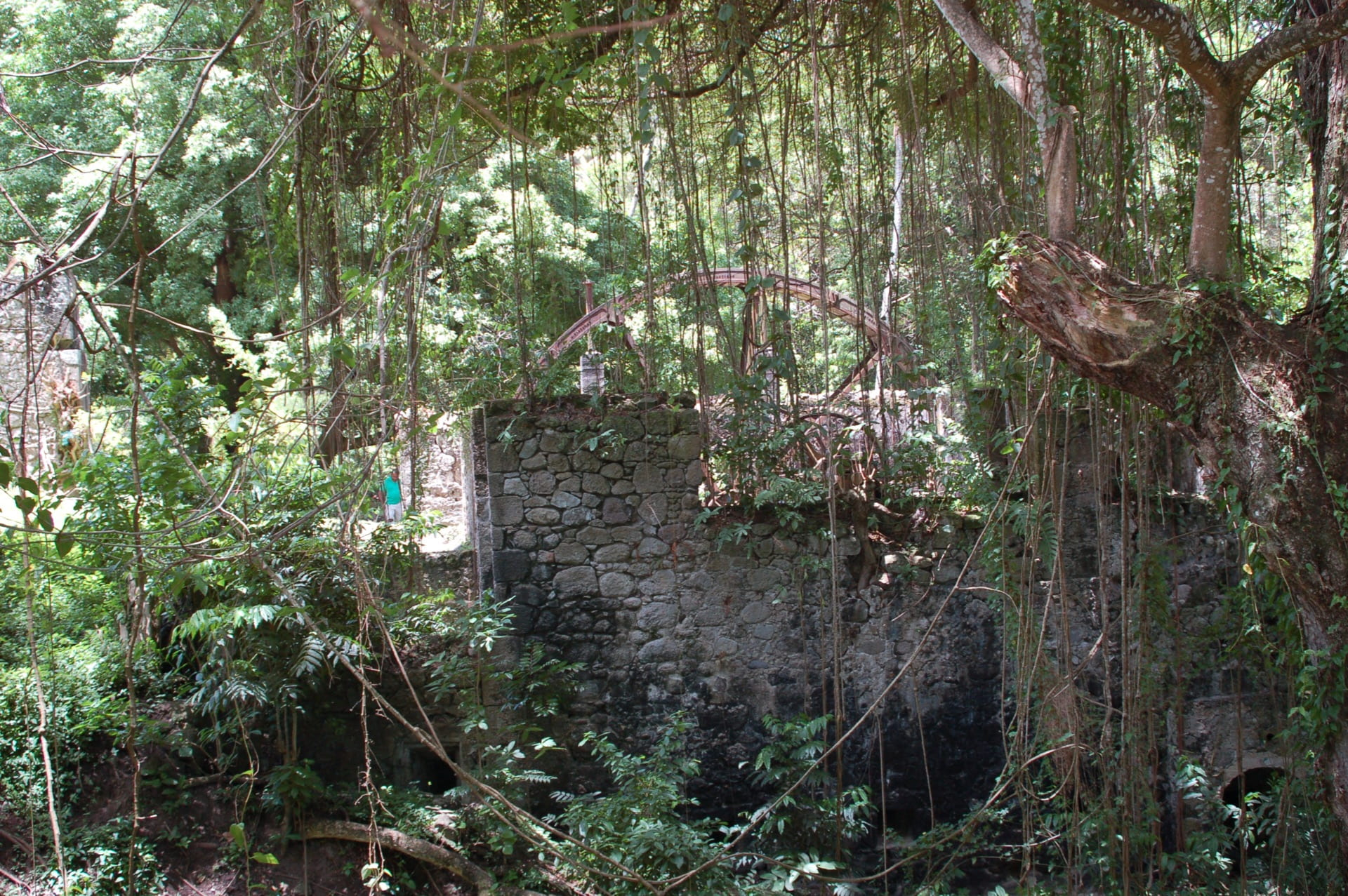 Water wheel and sugar mill in the jungle