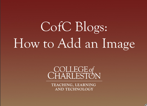Blogging with CofC Blogs: Adding an Image to a Post