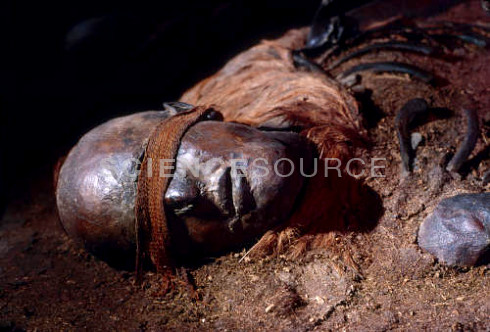 windeby girl analysis Like the yde girl, windeby girl had part of her hair cut off at the time of her death 11 tollund man 400-300 bc found bog bodies of the iron age.