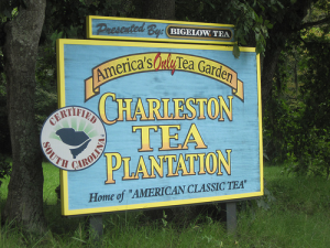 tea plantation sign