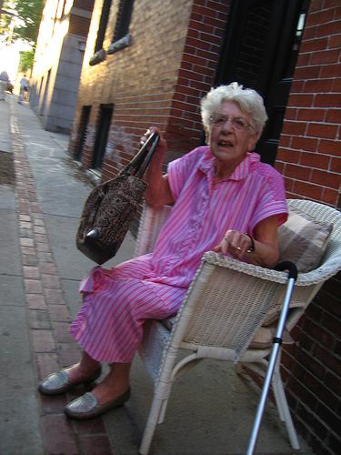 Old Lady Purse