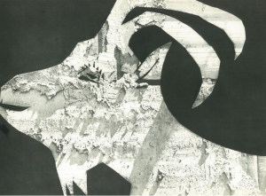 Picasso's Goat, one of the photograms on exhibition.